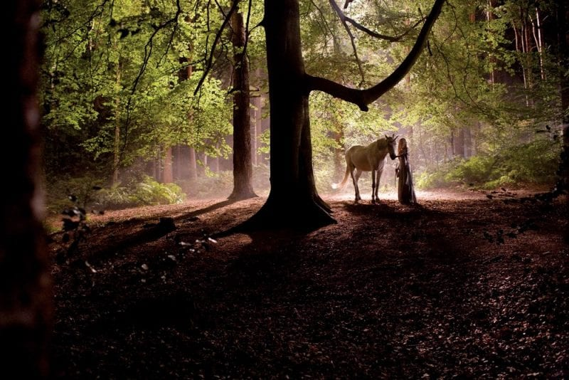 'Fallen Star' Yvaine (played by Claire Danes) with a unicorn in 'Faerie woodland' which was, in fact, Black Park, Bucks. (Credit Paramount Pictures 2006)