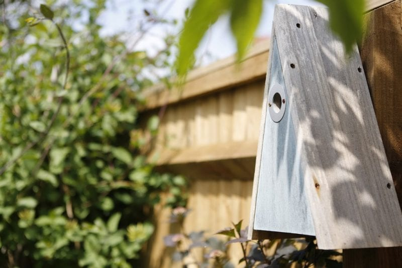 RSPB nest boxes for various small birds. Photos courtesy David Wilson Homes South Midlands.