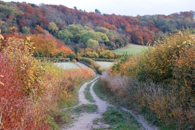 Autumn colours from Chinnor Hill