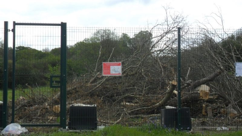 Colne Valley trees to be shredded by HS2