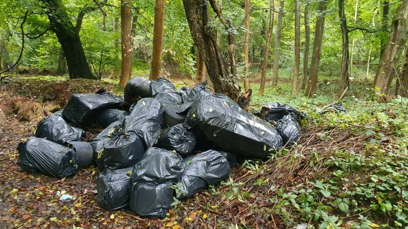 Dumped bags including cannabis waste near Little Marlow