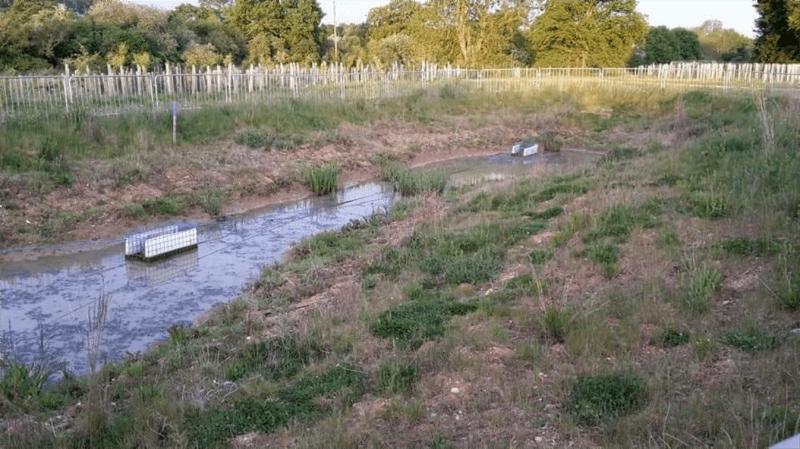 Colne Valley - Woodland Mitigation Site
