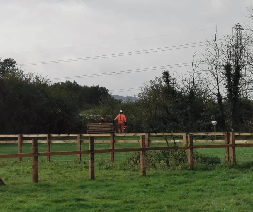 Fusion JV contractor cutting down hedgerows behind the memorial bench whilst on land owned by Bucks Goat Centre
