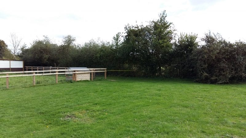 ...prompting the closure of this section of the Goat Centre, which contains the memorial bench...