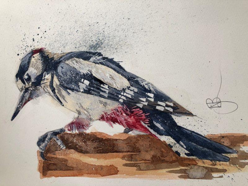 'Willie Woodpecker' by Niki Bell