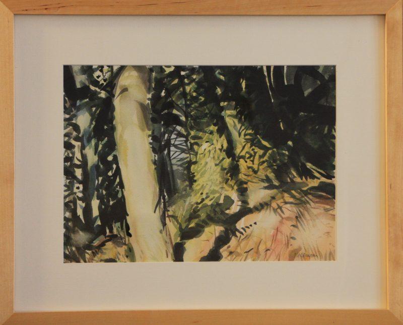 Glade, Boddington Hill - Peter Clayton