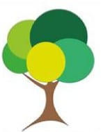 G O'Callaghan Tree Care Ltd